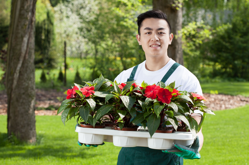 Forme-toi à l'horticulture !