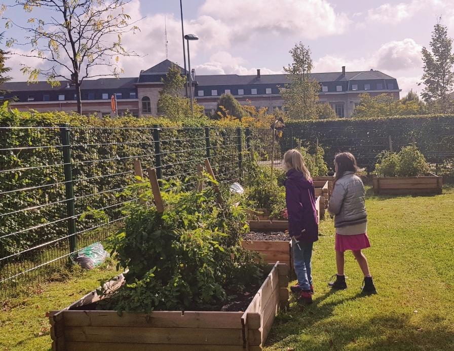 Notre école est inscrite au label Eco-School