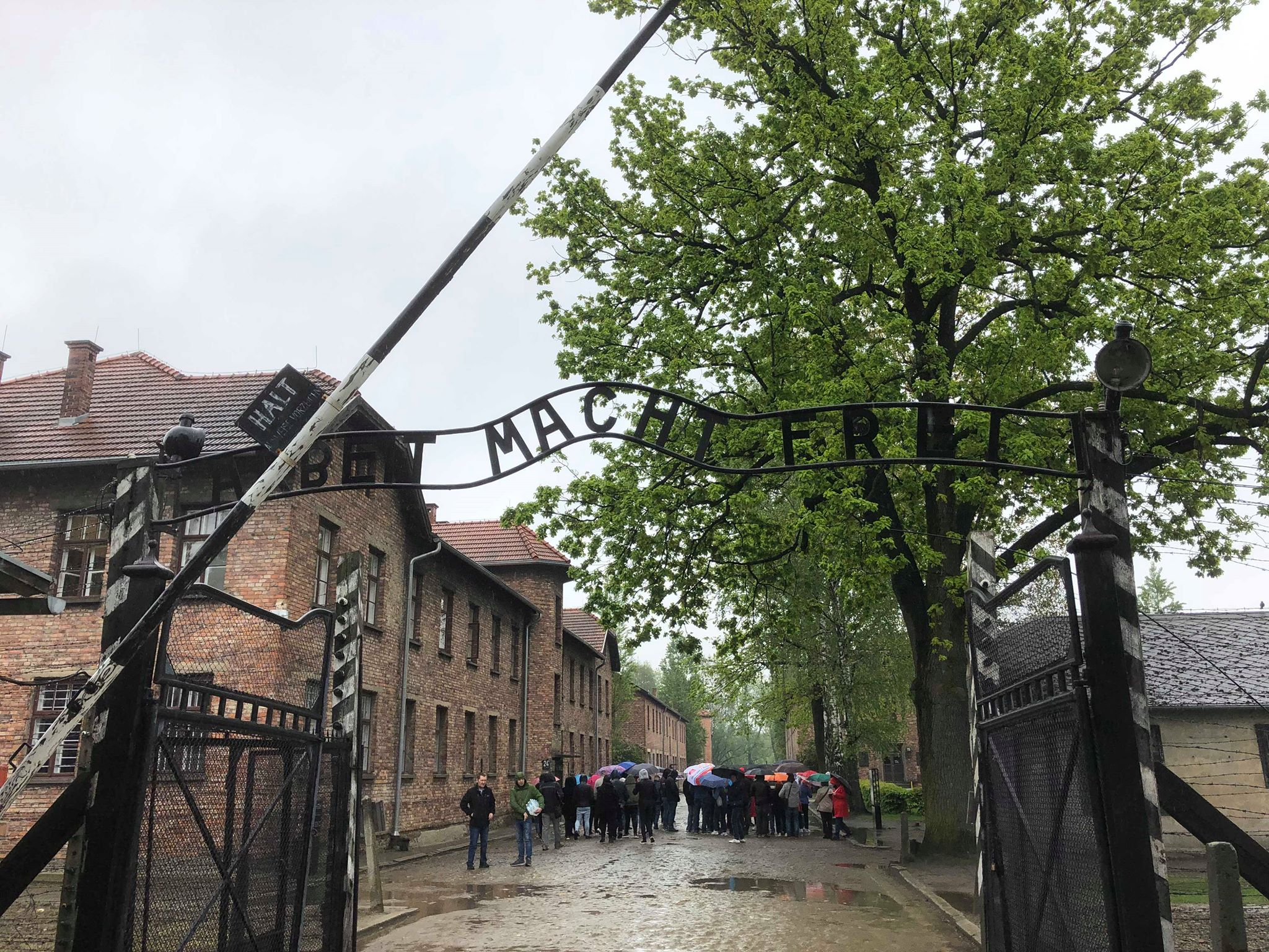 Le Lycée provincial Hornu-Colfontaine se rend à Auschwitz