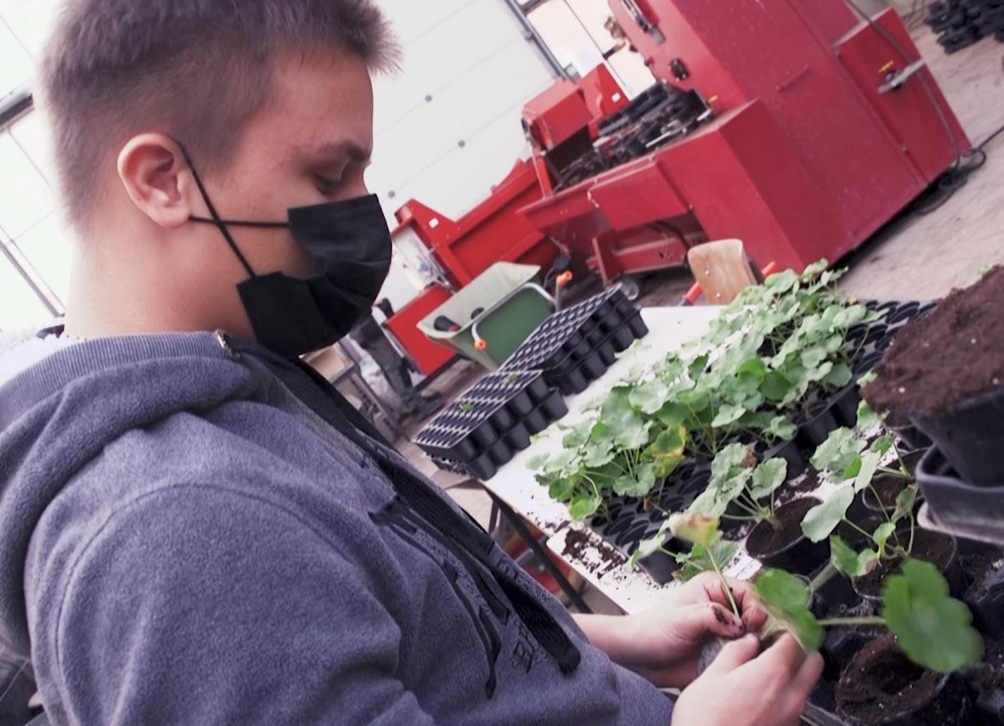 Découverte de l'école d'horticulture de l'Athénée provincial Warocqué