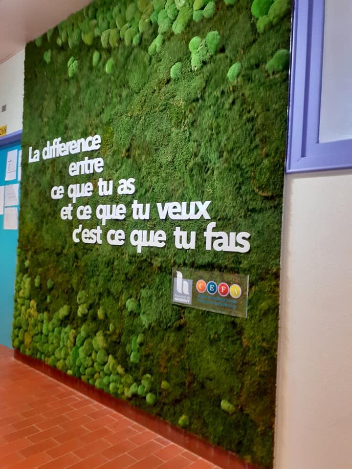 Projet d'un mur végétal via l'Assemblée des Jeunes