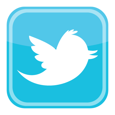 twitter bird icon logo vector 400x400
