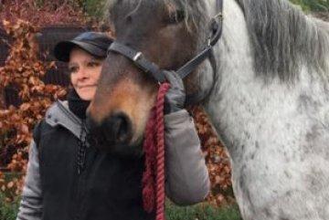 Les chevaux provinciaux aussi en confinement