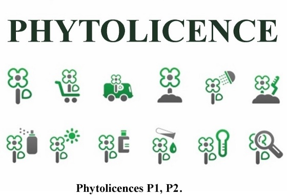 Phytolicence P2
